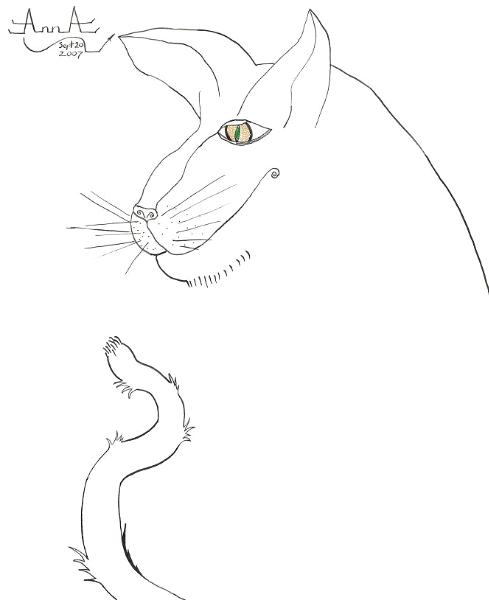 """""""Old Cat"""""""